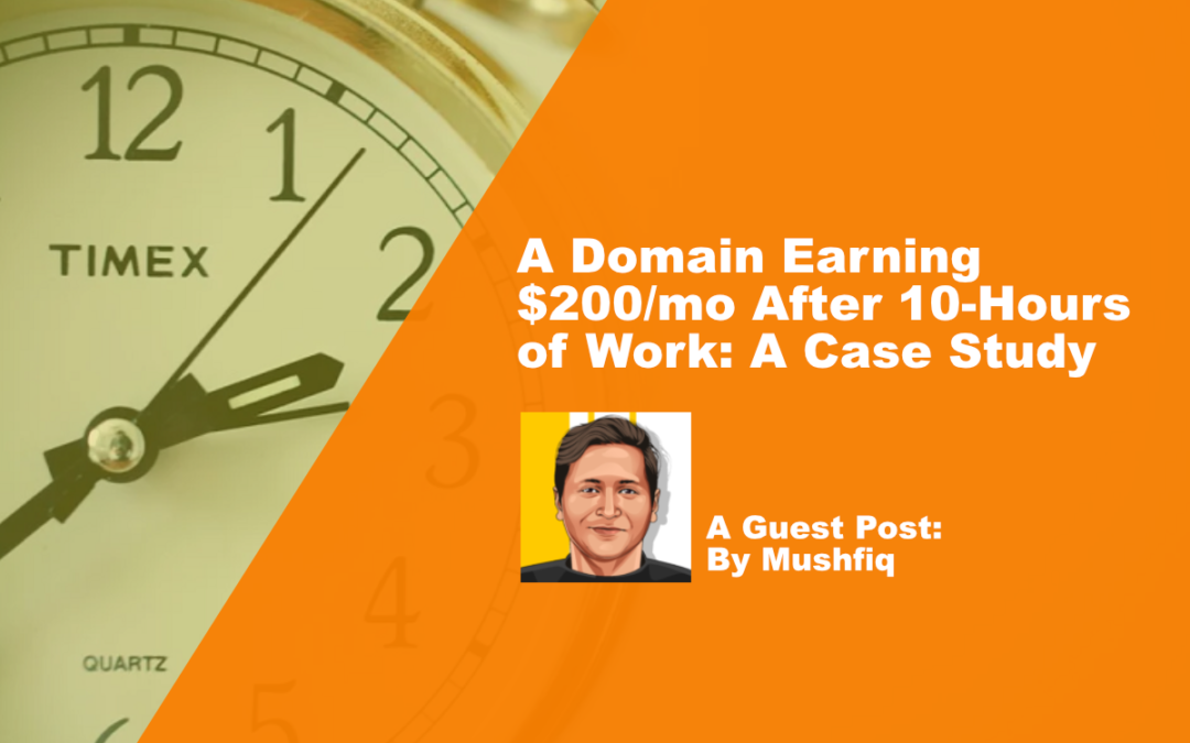 A Domain Earning $200/mo After 10-Hours of Work: A Case Study
